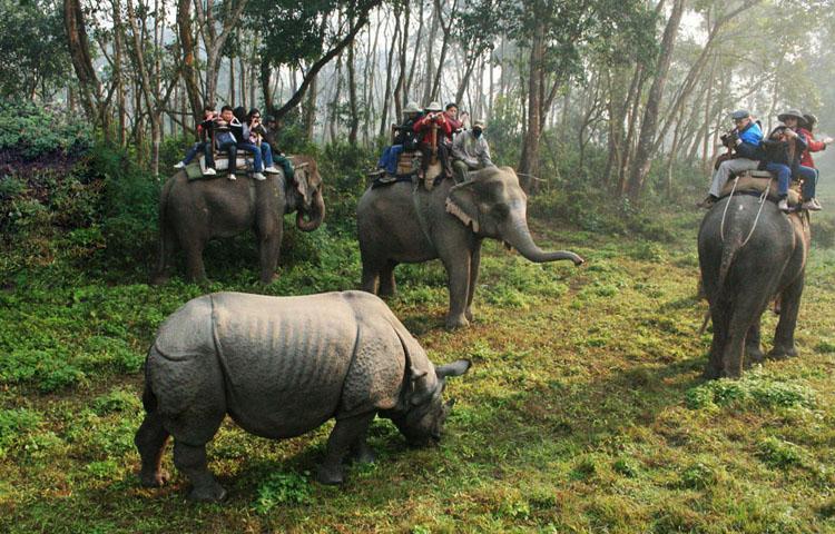 chitwan, leaf holidays
